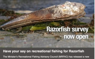 Have your say on recreational fishing for Razorfish (South Australia)