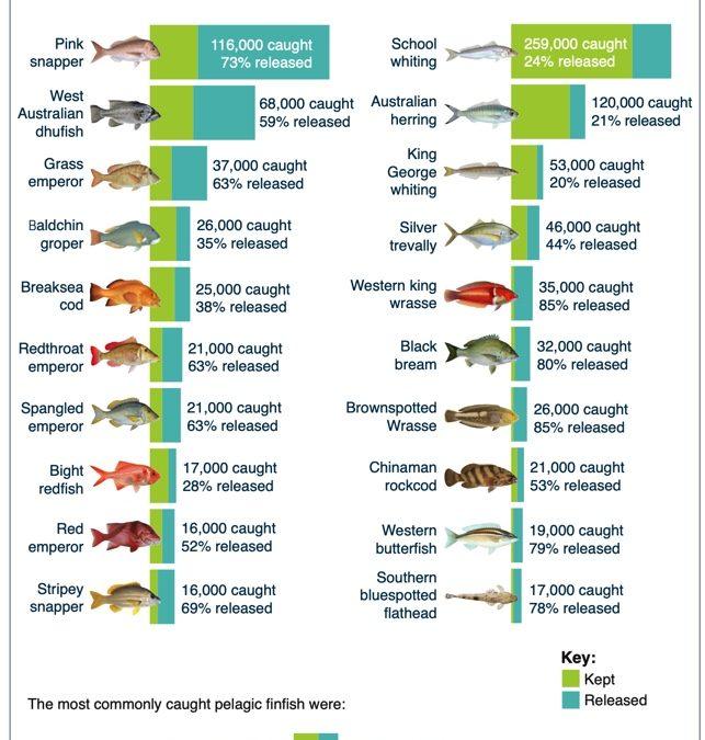 WA Recfishing Survey Results