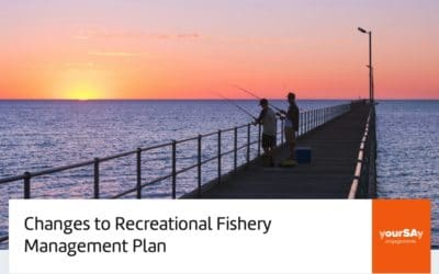 SA Management Plan for Recreational Fishing