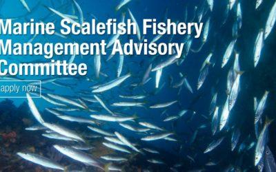 South Australia – Management Advisory Committee